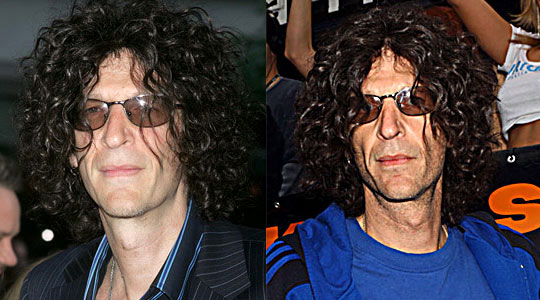 Howard Stern admits to plastic surgery : Reports