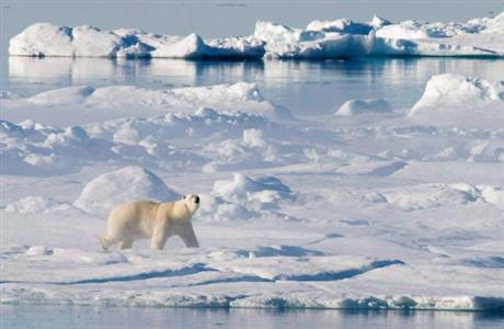 Canada to file claim to expand its Arctic seafloor boundaries, this week