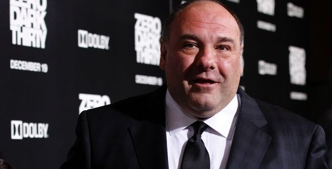 James Gandolfini's Teenage Son Called For Help after collapse