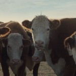 Chevy's Silverado 2014 Super Bowl Ad Is All About Romance