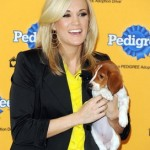 Singer Carrie Underwood volunteers at an animal shelter