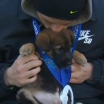 Olympic adopts five dogs