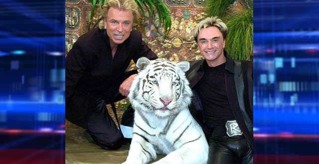 Tiger That Attacked 'Siegfried and Roy' Star Dies at 17