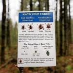 Lyme Disease rages in Northeast, Report