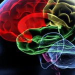 Managing Concussion Symptoms, Study