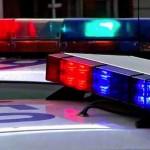 Dogs poisoned on northside : Police