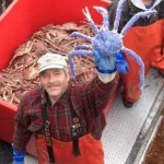 Blue King Crab : Rare blue-coloured crab discovered in Alaska