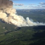 High temperatures raising concerns about wildfires, Report