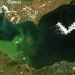 Toxic algae will make its way to Lake Erie later this summer, Report