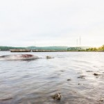 Whale carcass near Canso Causeway, Report