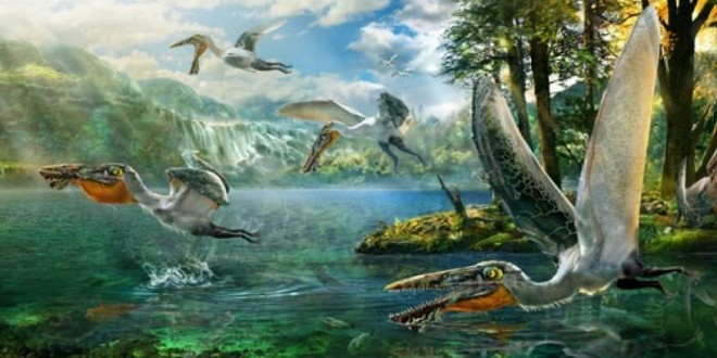 Ikrandraco avatar : Ancient Flying Reptile Ate Like a Toothy Pelican