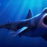 Megalodon shark became extinct 2.6 million years ago, UF Study