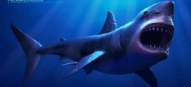 Megalodon shark became extinct 2.6 million years ago, UF Study