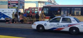 Toronto : TTC bus driver charged in fatal crash