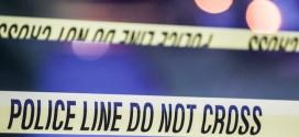 Dead newborn found in Regina backyard, police say
