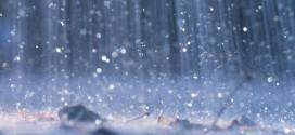 Environment Canada: High winds, heavy rain forecast