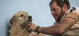 Stray dog follows adventure team for 40km (Video)
