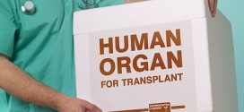 Organ donations from seniors could reduce wait times, study say