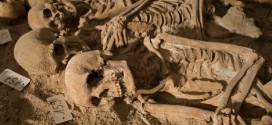 Medieval Skeletons Found In Paris – Photo : 200 bodies found in mass grave beneath Paris supermarket
