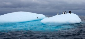 Researchers Recorded Hottest Day In Antarctica Last Week