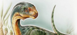 Researchers unearth fossils of 'jigsaw puzzle' dinosaur Chilesaurus