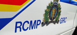 Hikers discover skeletal human remains near Canmore, RCMP investigate