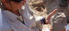 Researchers discover the world's oldest stone tools