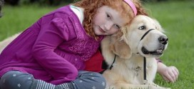 Service dogs that sniff out seizures give kids more normal lives, Report