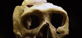 Ancient European had close Neanderthal ancestor, Says study