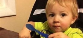 """Toddler Missing: Idaho Sheriff rules out possible lead on missing 2-year-old """"Video"""""""