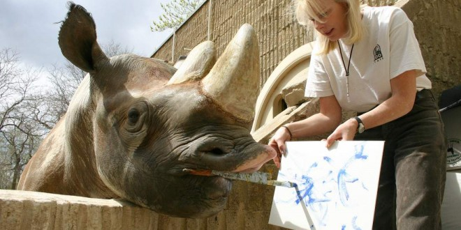"Denver zoo mourns death of beloved black rhinoceros known for his paintings ""Photo"""
