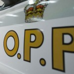 Buffalo struck, killed on QEW in Niagara region, two more on the loose