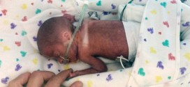 """Premature Baby Born on a Cruise Ship is Home in Utah """"Video"""""""