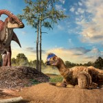 Scientists look at fossilized eggs to explain evolution of dinosaur nests