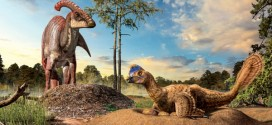 Dinosaur nesting research at the U of C shows similarities to birds, Report Says