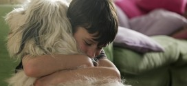 Study shows that dogs reduce 'anxiety' in children
