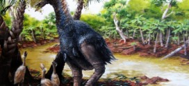 Gastornis: Giant, flightless bird wandered the Arctic 50 million years ago (Photo)