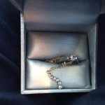 Family finds jewelry toddler flushed three years ago (Photo)