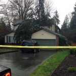 Jill Calder: Woman dies in Port Moody after tree falls on her home
