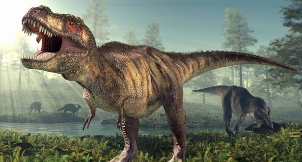 """Researchers believe they've found a """"pregnant"""" T. rex"""