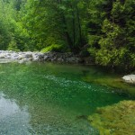 Young teen dead after falling into waters of Lynn Canyon