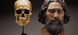 Kennewick Man set to receive tribal burial after decades in limbo