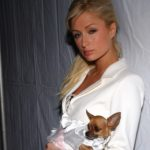 Actress Paris Hilton to star in a documentary about her life