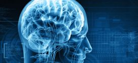 Brain cancer genes identified, says new research