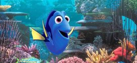 Finding Dory release could trigger further decline of clownfish populations, new study