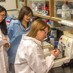 Lawrence Livermore scientists identify gene involved with fracture healing