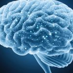 Researchers identify rare genetic flaw linked to multiple sclerosis