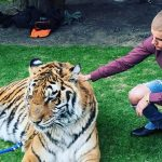 Justin Bieber warned by Toronto Animal Services over wild cat photos