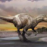 Meet Murusraptor: New 'Giant Thief' dinosaur discovered