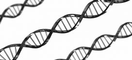 New Catalog of DNA Variations Helps Find Roots of Disease